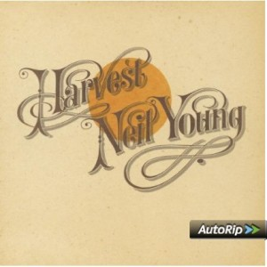 Neil Youngs bekanntestes Album.