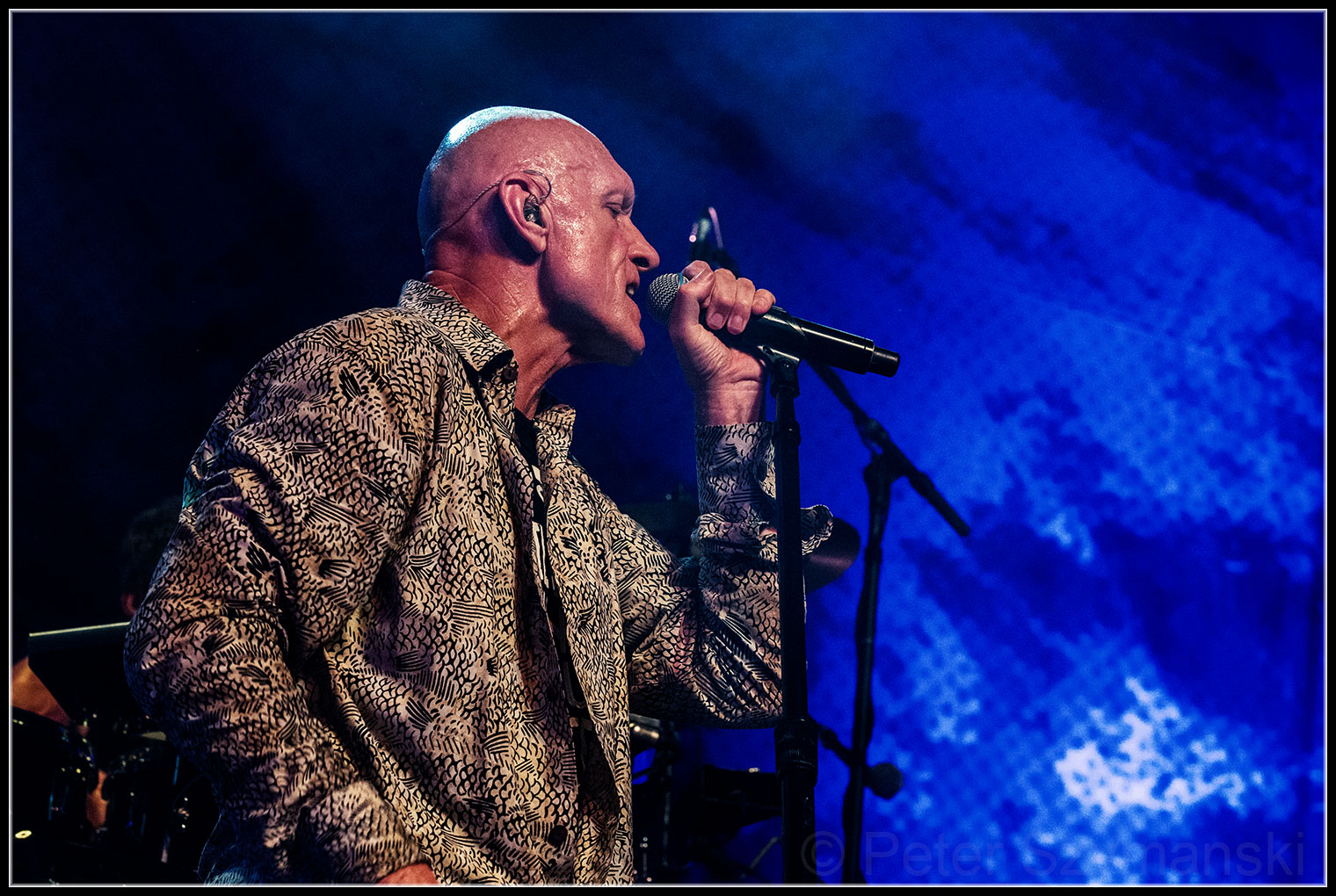 Midnight Oil (9)