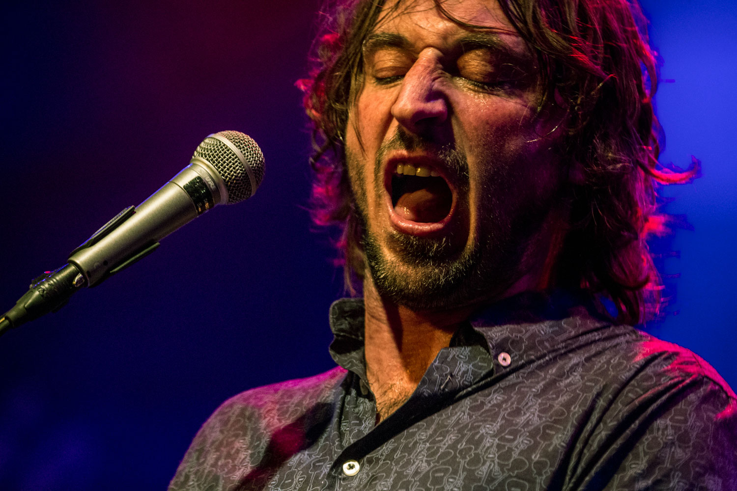 Wille And The Bandits (10)